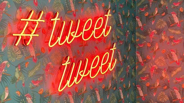 Neon sign reads tweet tweet