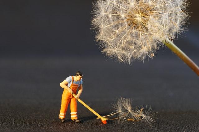 Toy man sweeping up fallen dandelion seeds