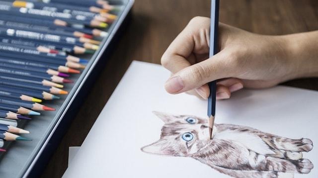 Side Jobs Artist Drawing a Cat