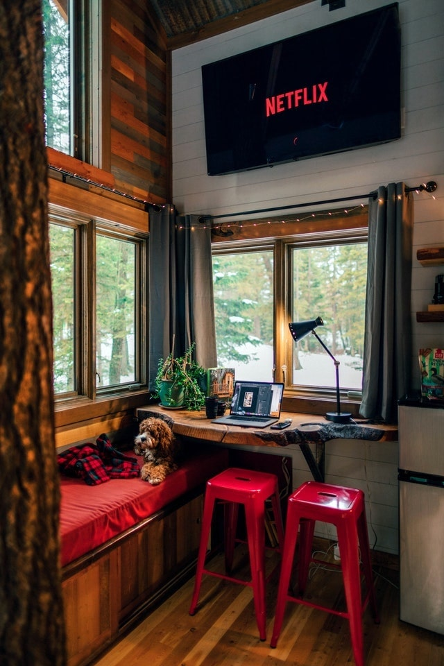 Window seat with dog on top of red cushion