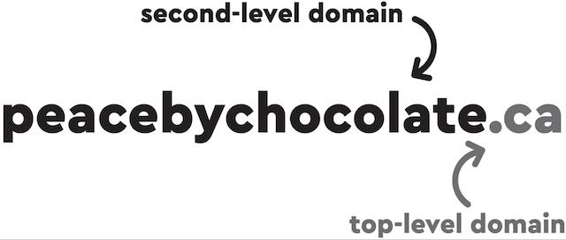 Domain Names 101 TLD Example