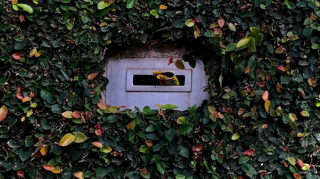 Email Address Mailbox